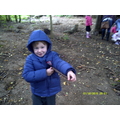 We used small sticks.