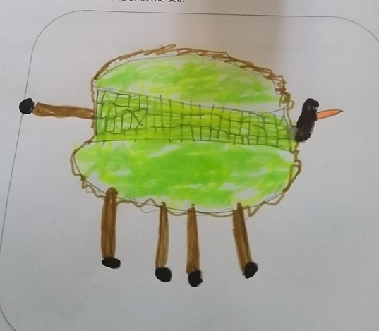 Ethan's new animal for his English work.