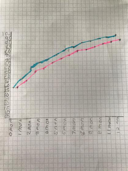 Lily's graph for Science.