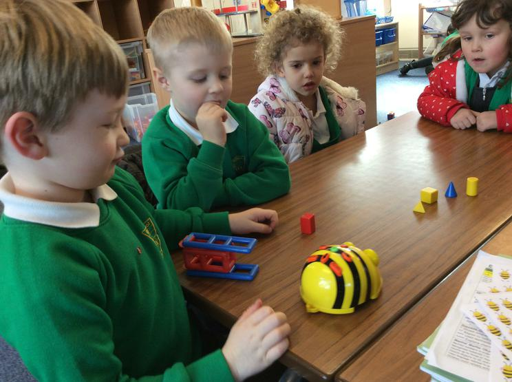 We use beebots in our learning.