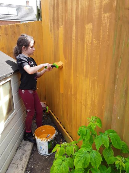 Laura's been painting the fence!