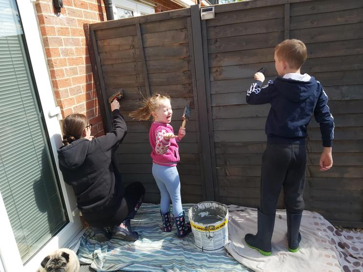 Archie painting the fence.