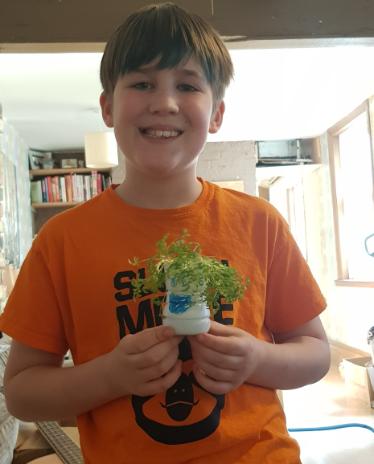 Oscar planting Cress.