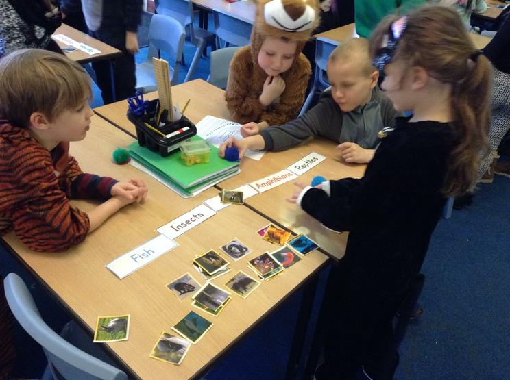 We sorted animals into the 6 special animal groups
