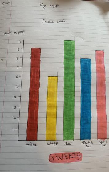 Lily's beautifully neat graph work in Maths