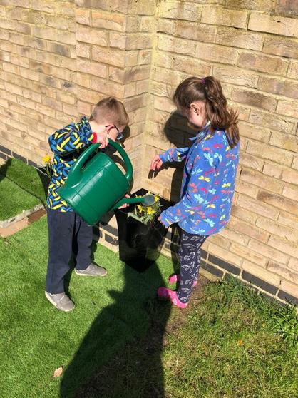Bella watering the plants with her brother