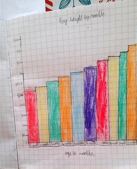 Ethan's Bar Graph