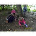 We made dens for the pigs.