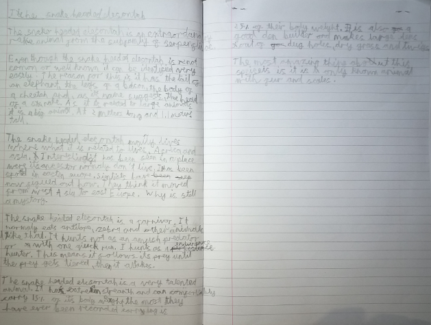 Joshua's Information Text