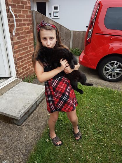 Amelia saw her nanny and grandads cat.