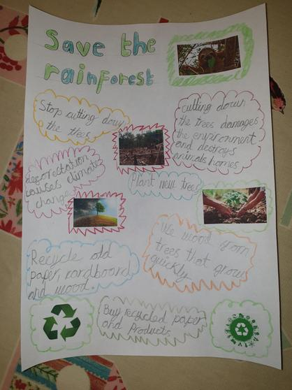 Lucy's deforestation poster