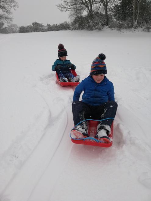 Walter -fun in the snow.