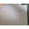Jellyfish phonics from Zak.