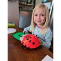 A wonderful ladybird.