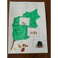 Harper's ladybird life cycle diagram.