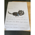 Harper has made a missing cat poster.