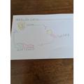 Worm life cycle.