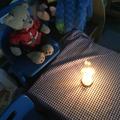Year R -  Class Bear's  Birthday