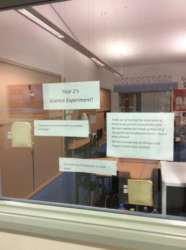 Experiment to see the importance of good hand hygiene
