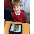 Year 2 programming with the Blue-Bot app to avoid obstacles in the Great Fire of London