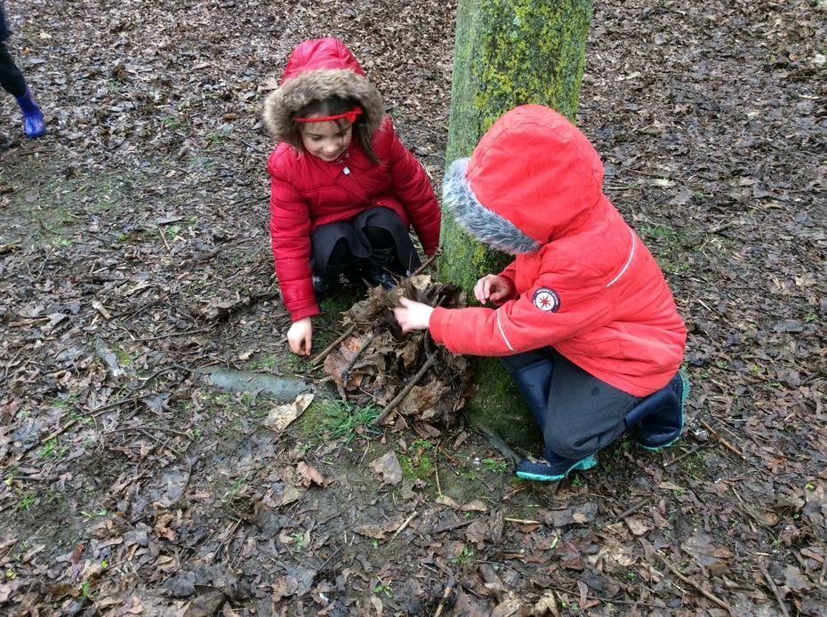Winter dens for hibernating hedgehogs.
