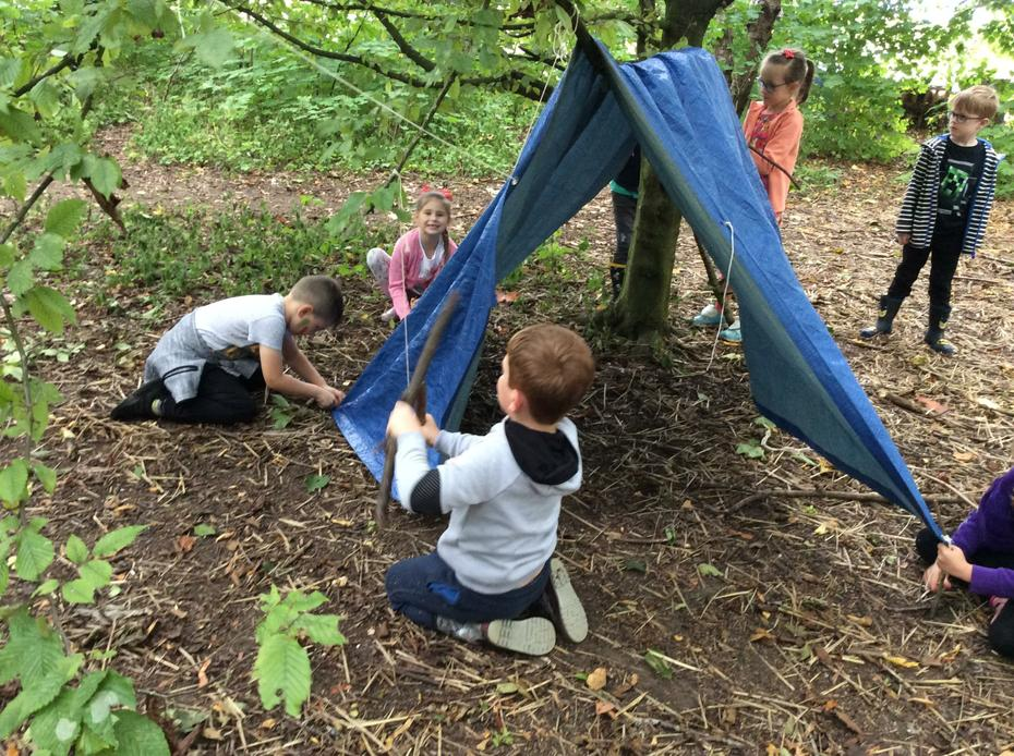 We worked together to build a shelter.