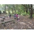 We've been exploring the woods.