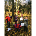 We investigated trees on our woods wow day.