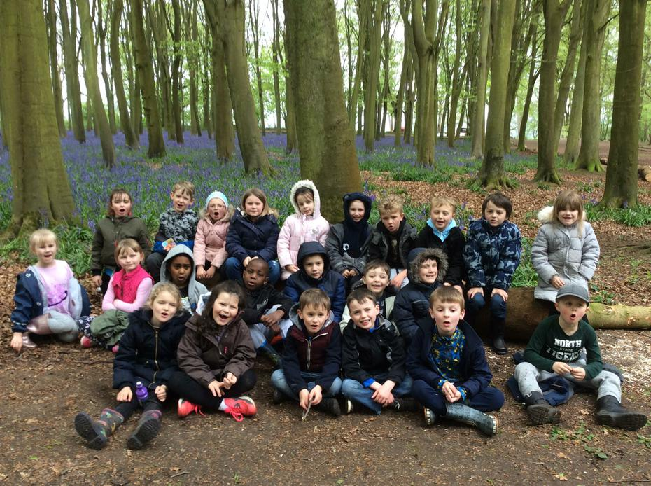We had great fun in Badbury Clumps