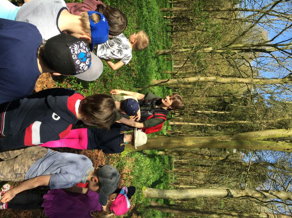 We learnt about different trees that grow there