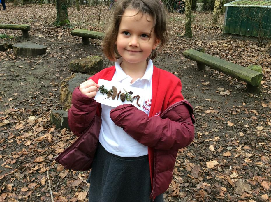'I found pine cones, seeds, some moss and leaves.'