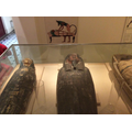 We visited Derby Museum and the mummy collection