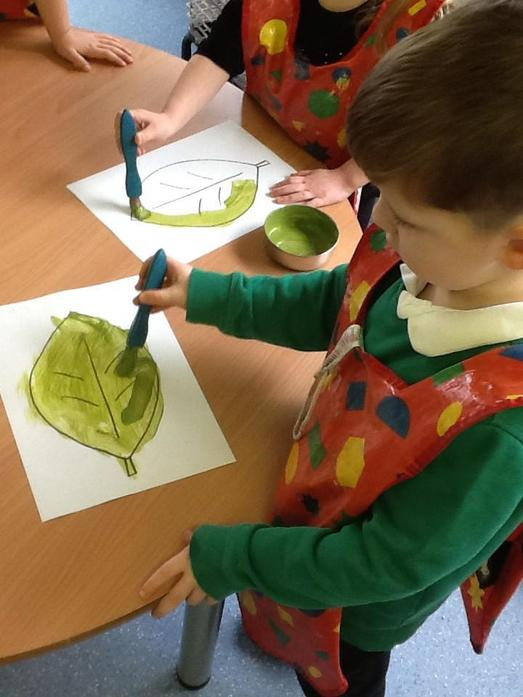 We looked at the colour of the leaves in spring compared to winter.