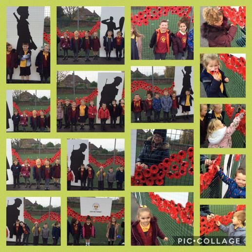 Putting our poppies up 3
