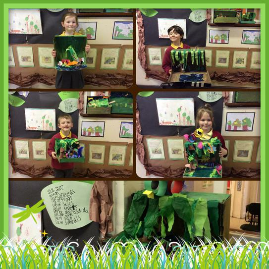 Our Rainforest-in-a-box creations.