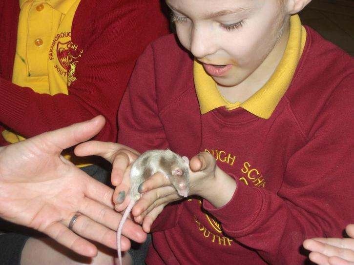 We got to hold a mouse!