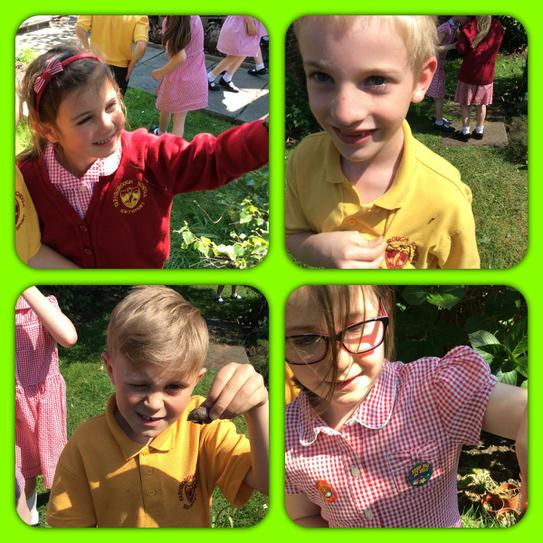 What a beautiful day for a bug hunt!