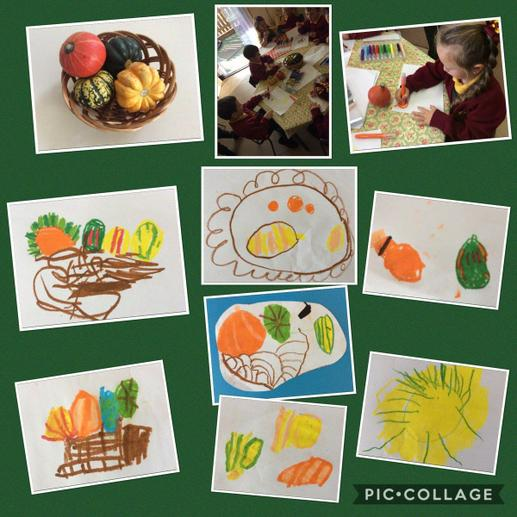 Observational drawings of pumpkins