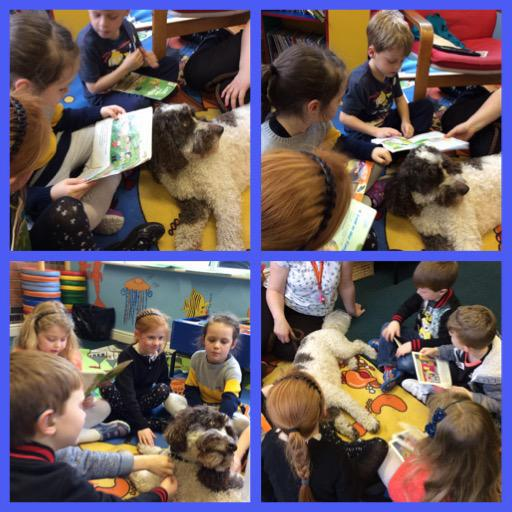 We loved reading to Archie the therapy dog.