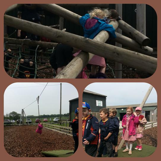 Outdoor play area at Farmer Teds