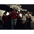 Mr Hanlon's group at the Natural History Museum