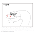 Dragon Art How To 11.PNG