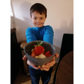 Finnley's Fruit Salad