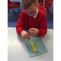 We explored the stem and the petals..