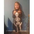 Sienna's Skeleton