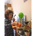 Anja watering her sunflowers