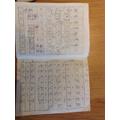 Anja's Chinese writing