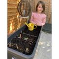 Indie planting veggie's, herbs and flowers
