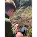 Brandon writing about Ashdown Forest