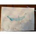 Alisha's dolphin poster